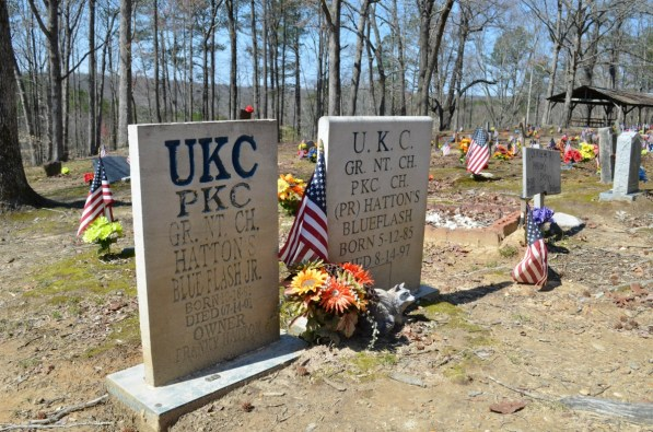 Two of Franky Hatton's dogs are buried here. (Anne Kristoff / Alabama NewsCenter)