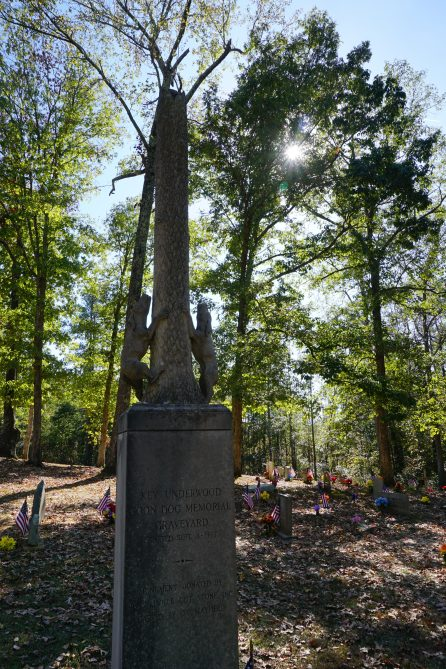 Key Underwood Coon Dog Memorial Graveyard, 2016. (Erin Harney/Alabama NewsCenter)