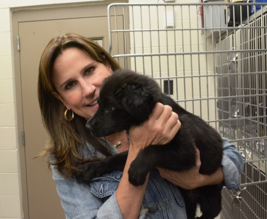 Allison Black Cornelius' love for animals has made an impact in Birmingham, and when disaster strikes several states away, she's ready to help animals there, too. (Karim Shamsi-Basha/Alabama NewsCenter)