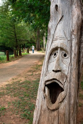 Artist Tim Tingle's carvings using the trunks of dead trees make Orr Park one of a kind. (Brittany Faush-Johnson/Alabama NewsCenter)