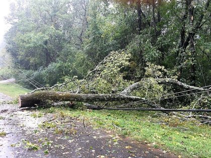 Hurricanes can cause damage far inland. Hurricane Nate in 2017 felled trees in the Birmingham area, causing outages. (Donna Cope / Alabama NewsCenter)