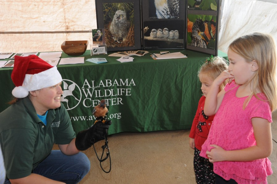 Young visitors to the Craft and Bake Sale spending a little time with AWC's American Kestrel. (Contributed)