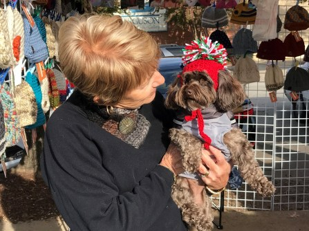 Knit caps for puppies are among the wares for sale at Meme's Crocheted Creations. (Contributed)