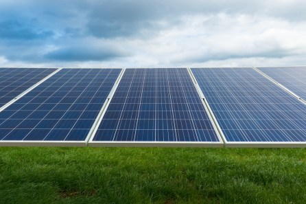 The $140 million solar facility in Chambers County covers 1,100 acres. (Phil Free / Alabama NewsCenter)