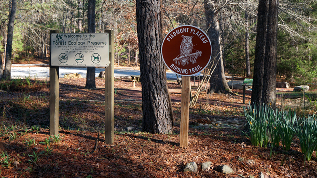 Auburn's Louise Kreher Forest Ecology Preserve added to Alabama Birding Trails