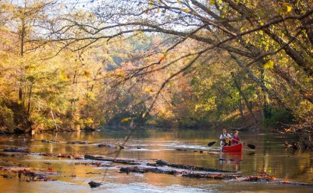 The Alabama 100 Miles Challenge gives people a variety of ways to accumulate their 100 miles in the state's beautiful outdoors. (Wallis)