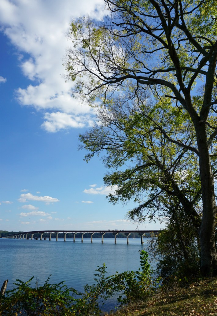 Colbert Ferry site on the Tennessee River is along the Natchez Trace Parkway. (Erin Harney / Alabama NewsCenter)
