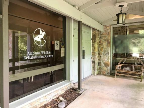 The Alabama Wildlife Center is holdings its annual Baby Bird Shower fundraiser May 26. (Brittany Faush / Alabama NewsCenter)