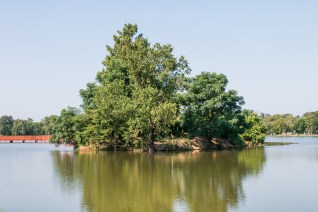 A Five Star Grant from the National Fish and Wildlife Foundation through Southern Company is funding a continuing cleanup of East Lake Park. (Charlestan Helton/Alabama NewsCenter)