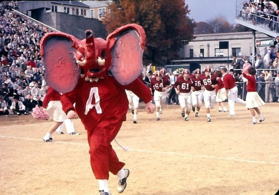 Melford Epsey, Jr. dressed as an elephant mascot before the days of Big Al. (Paul W. Bryant Museum / The University of Alabama)