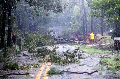 Hurricane Michael left down trees and power lines in Florida, Alabama and Georgia. (Wynter Byrd / Alabama NewsCenter)