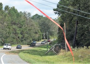Winds and rain took down power lines. (Wynter Byrd/Alabama NewsCenter)