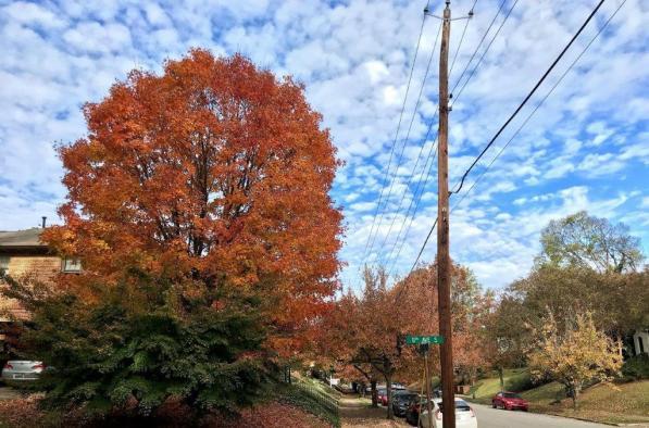 The colors of fall are on display across Alabama. (Michael Sznajderman / Alabama NewsCenter)