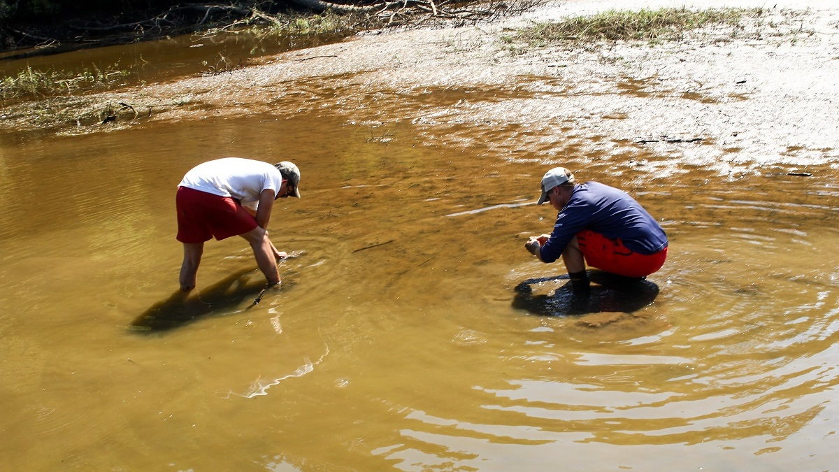 Alabama Power works to save threatened snails on Coosa River