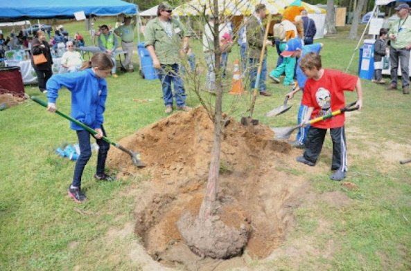 The whole family can help plant trees for Earth Day. (Contributed)