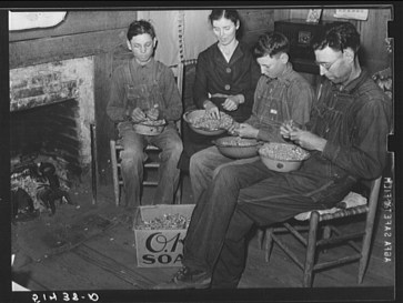 Mr. and Mrs. E.H. Wise and sons shelling peanuts for planting in Coffee County in 1939. (Library of Congress, Prints and Photographs Division)