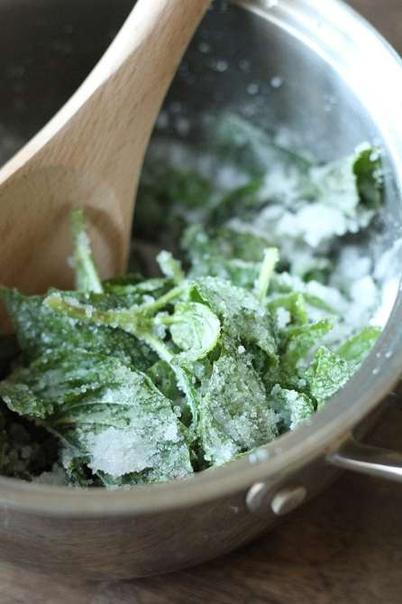 Basil leaves will turn traditional lemonade into an exciting super drink. (Southern Bite)