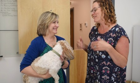 Hand in Paw has been providing therapy dogs in Alabama for 23 years, and the organization works with more than 100 medical centers, schools and service organizations. (Karim Shamsi-Basha/Alabama NewsCenter)