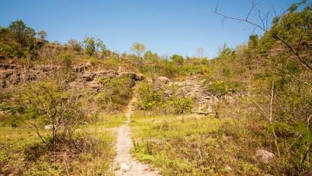 The limestone quarry at Ruffner Mountain. (Dennis Washington / Alabama NewsCenter)