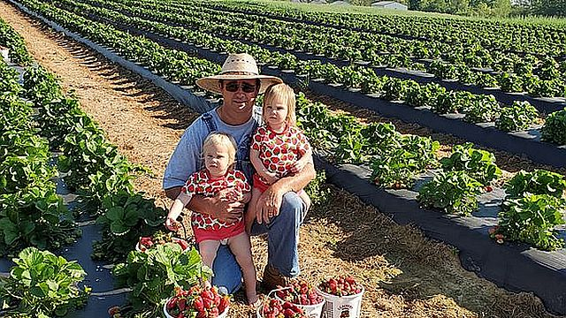 Pick your own fruits and veggies, support Alabama farmers while social distancing