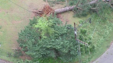 Downed trees and lines from Easter Sunday storms caused outages throughout Alabama. (Greg Coffey/Alabama Power)