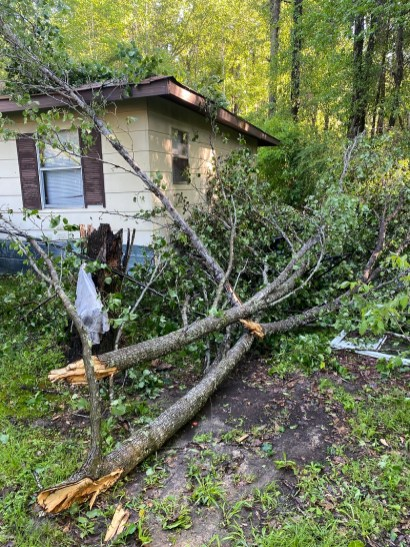 Downed trees brought down many power lines throughout Alabama during the Easter Sunday storms. (Chris Hope/Alabama Power)