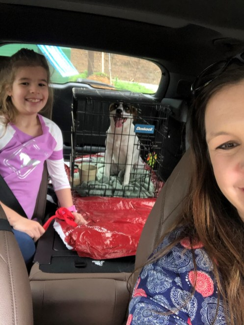 The Baileys bring home their new puppy, Lindsey. (Jeannine Bailey)