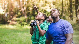 Alabama Audubon offers 'Birdwatching for Beginners' online