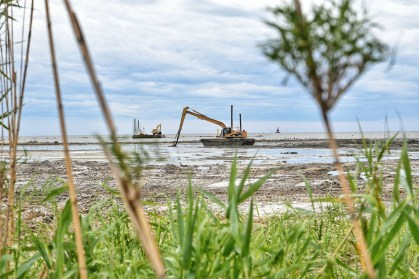 TNCA says contractors pumped more than 275,000 cubic yards of dredged material to fill the marsh creation areas. (Lisa Johnson)