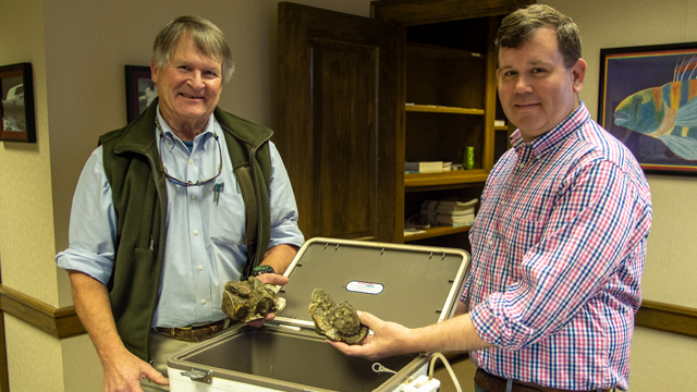 More volunteers needed to grow oysters in Mobile Bay
