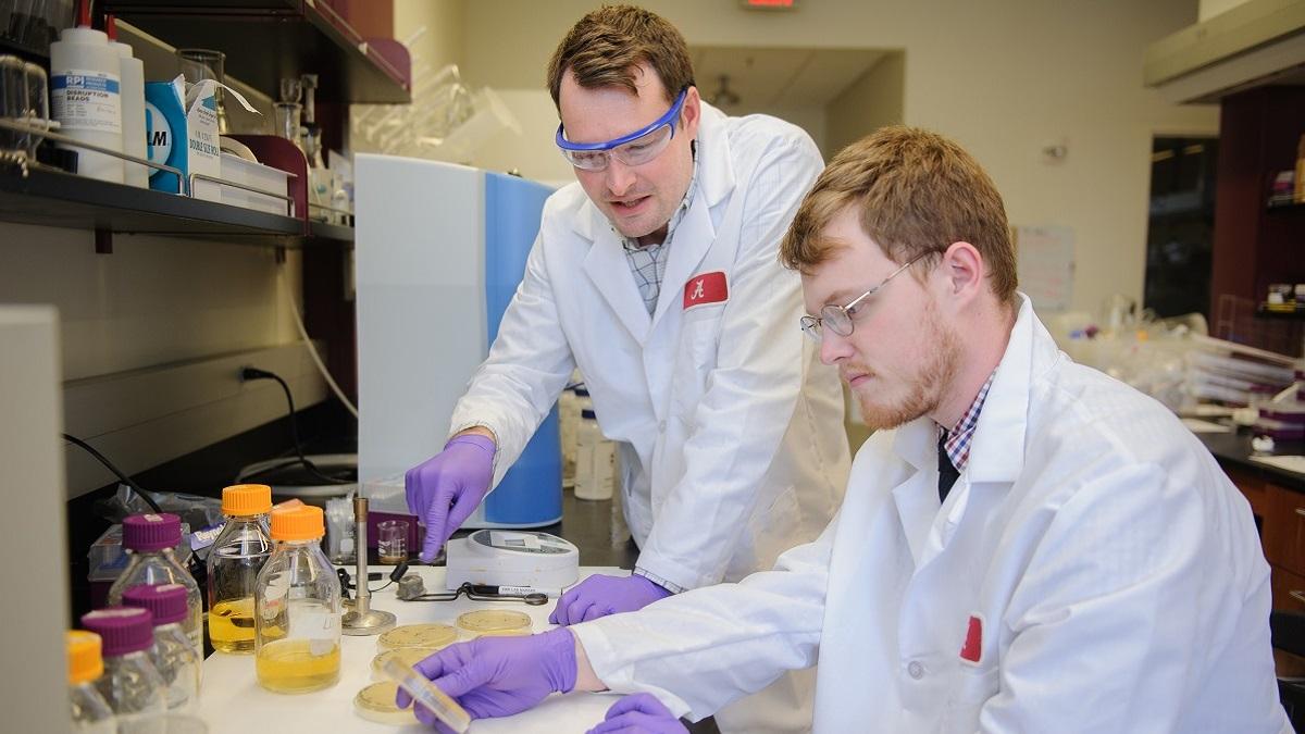 University of Alabama kick-starts 6 projects related to COVID-19, future pandemics