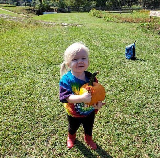 The kids can select their own pumpkin at Bennett Farms. (Bennett Farms / Alabama NewsCenter)