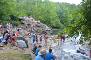 Turkey Creek Nature Preserve is a place for recreation and education. (contributed)