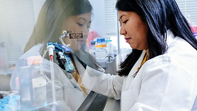 UAB research funding from National Institutes of Health tops $300 million