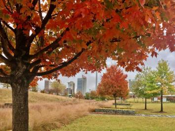Birmingham Railroad Park is a great place to take in an Alabama autumn. (Michael Sznajderman / Alabama NewsCenter)