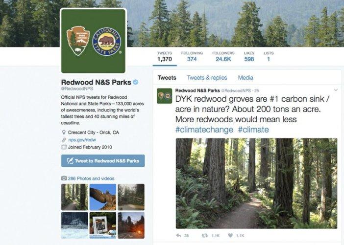 NPS tweet