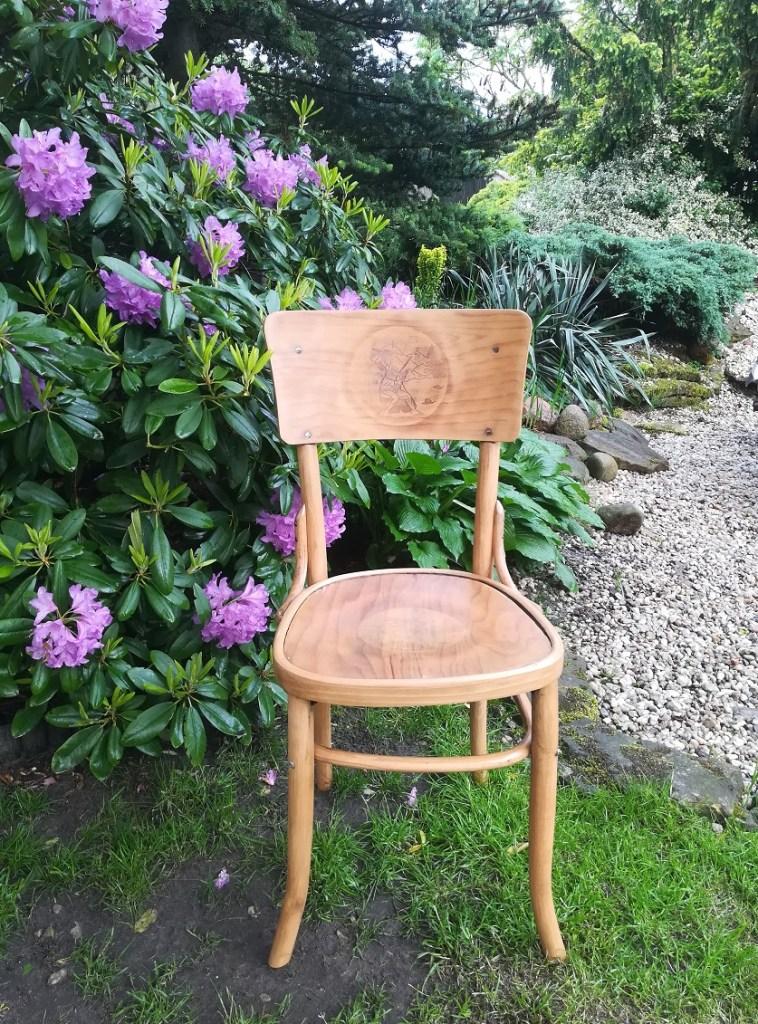 Krzesło typu Thonet odnowione