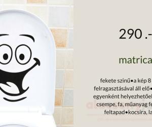 Matrica -16*21cm- WC Smile -290Ft