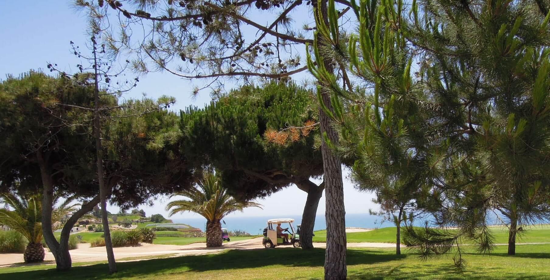 Golfpálya melletti ingatlanok