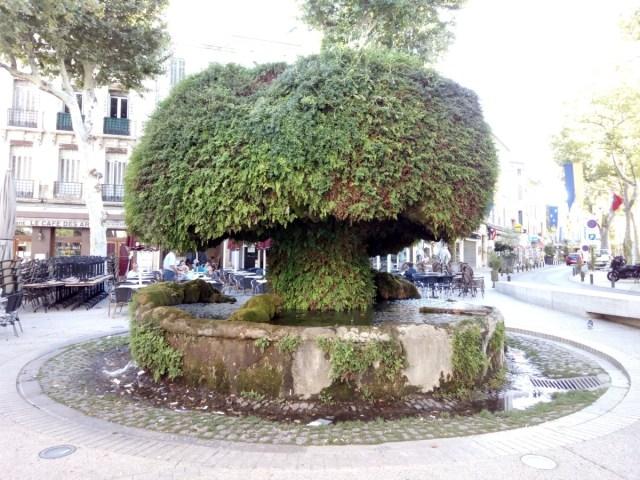 Fontaine Moussue. Fuente típica de Salon de Provence.
