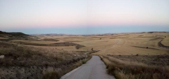 El camino y los campos