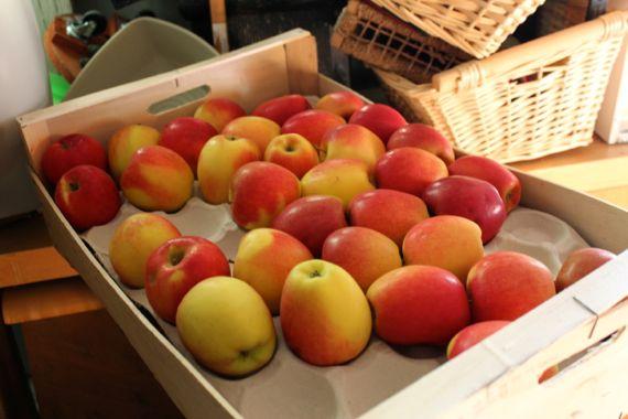pommes d'amour01