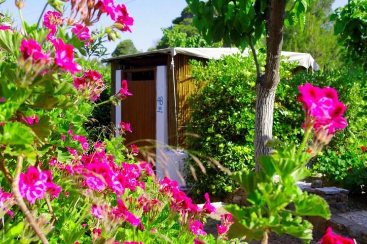 skyros holidays greece