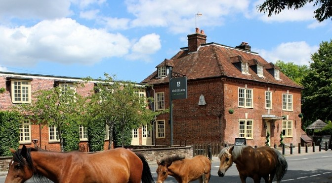 The Bell Inn: a cosy New Forest coaching inn perfect for country walks