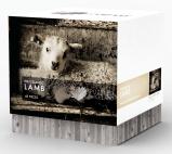 Shop: The Icelandic Lamb 48 pcs Puzzle