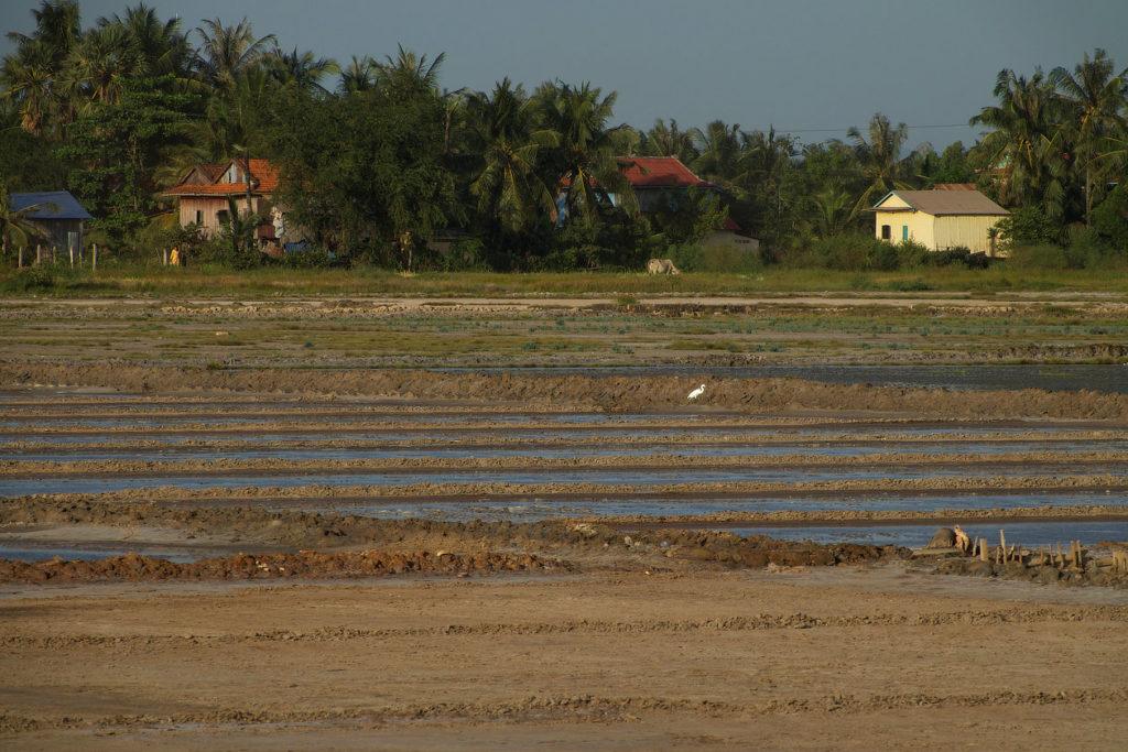 Marais salants près de Kampot