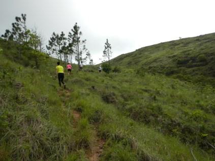 Subiendo hacia la cima del Cariguana