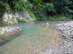 Río Indio