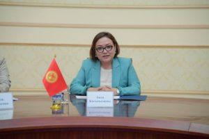 Аида Касымалиева Танзила Нарбаеваны Кыргызстанга чакырды. Ал болсо…