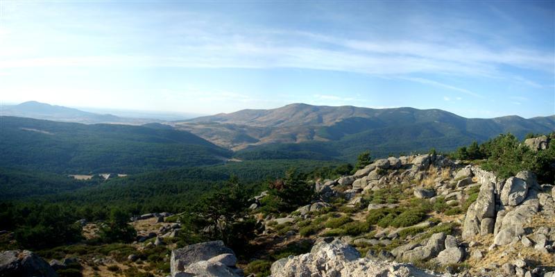 Panorama 4 (Medium)